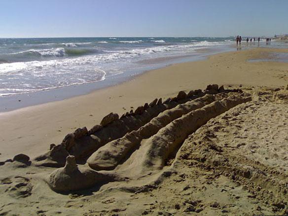 Intervención en la playa de la Victoria. Cádiz. 2007