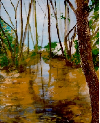Monfragüe, Arroyo Mal vecino, 81 x 100,  t mixta sobre lienzo 2009