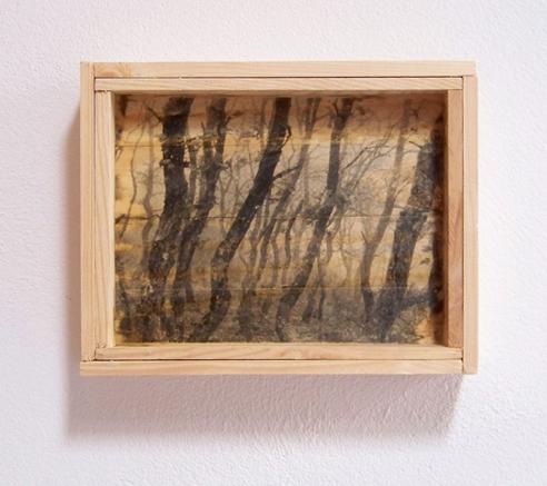 Bosque. 2009. Emulsión fotográfica sobre madera. 20 x 25 cm.