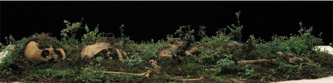 Dong Wensheng, Estudio de la fenomenología..., fotografía 50 x 200 cm. 2008