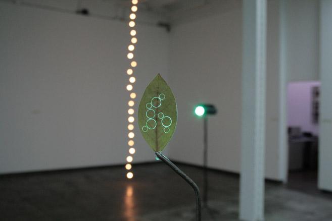 Elegancia y renuncia, 2011