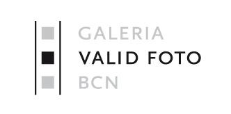 Valid Foto Logo