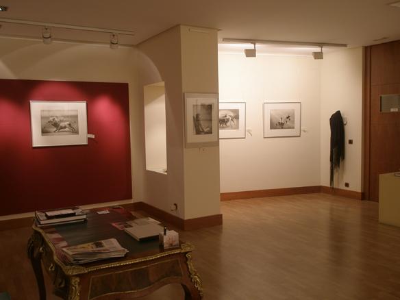 Vista galería 1