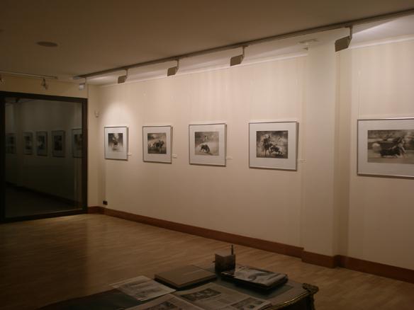 Vista galería 2