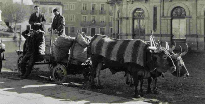 Ruth Matilda Anderson, Carreteando naranjas para el mercado, Lugo, 1925