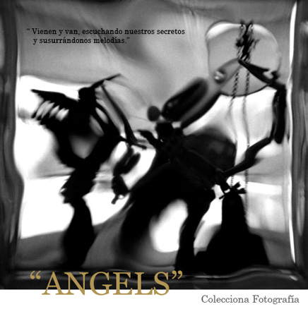 Rogelio Camargo, Angels
