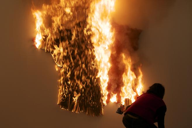 France burntunburnt,  2011