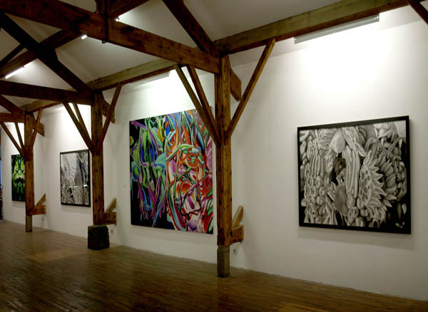 Exposición de Ernesto Casero en el Centre dArt Contemporain de Perpiñán
