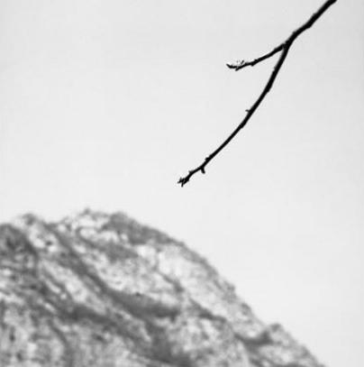 Zhao Liang, Ramas y la montaña, 2006-2011