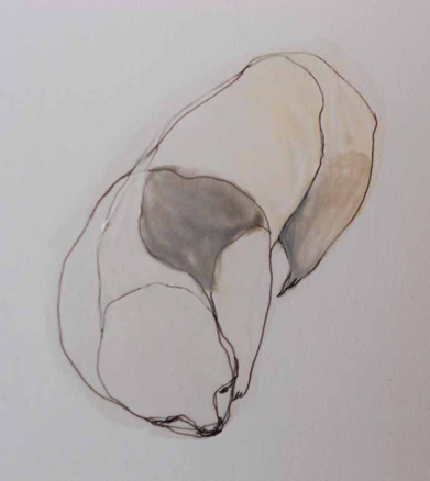 Regina Quesada, Serie Le Primitif