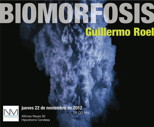 Guillermo Roel, Biomorfosis