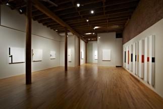 Cesar Paternosto, Installation at Cecilia de Torres, New York, 2012