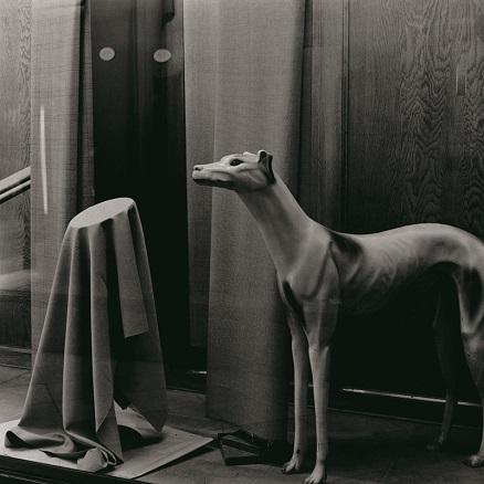 Ferran Freixa | Ir al evento: 'Desde dentro. Fotografías de la Colección Foto Colectania'. Exposición de Fotografía en Fundacion Foto Colectania / Barcelona, España