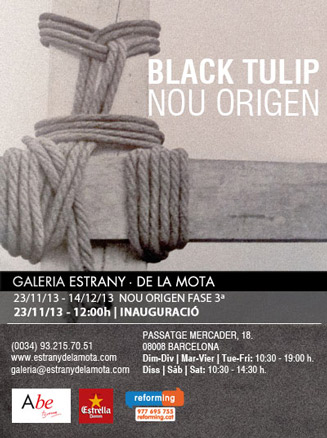 Black Tulip - Nou Origen