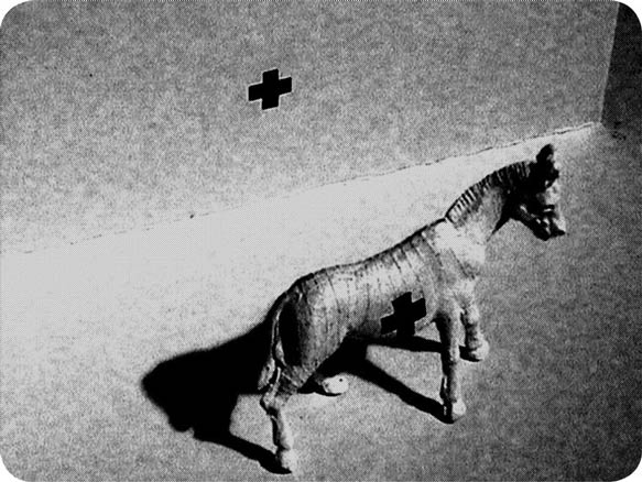 Deyson Gilbert, Cavalo e Duas Cruzes, 2004