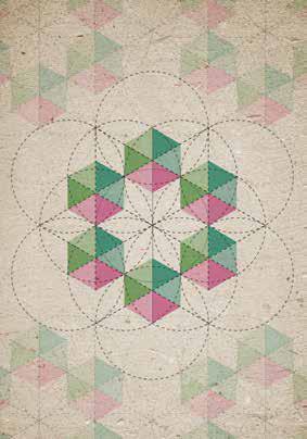 Cátia Tomé, Las formas geométricas en la naturaleza