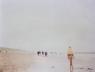 """"""" Antidog, Parnassia"""" 120 x 155 cm. Foto analógica en color, enmarcada. Edición de 3 + 1 P.A. 2002. Cortesía de Juana de Aizpuru"""