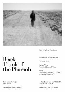 Black Trunk of the Pharaoh