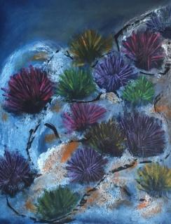 Otras flores del Mar