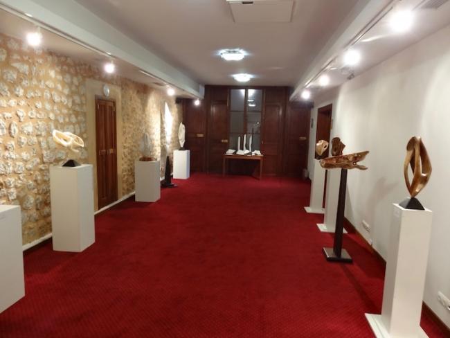 sala exposición 2