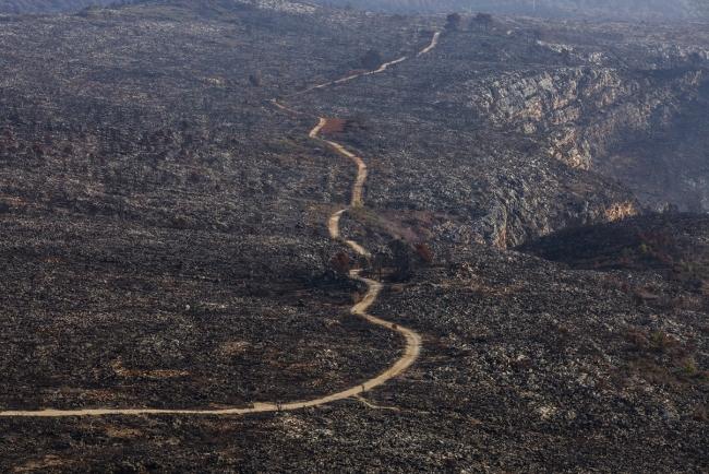 España, camino de ser un gran desierto. Foto Miguel Lorenzo — Cortesía de Tania Castro