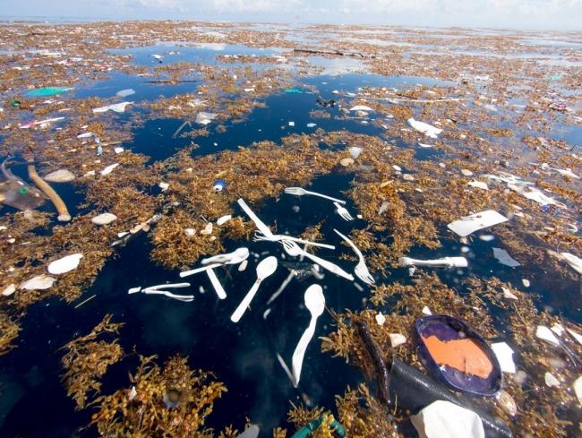 Exposición Fotos pel canvi, Las Naves, Isla de basura, Caroline Power, 01 — Cortesía de Tania Castro