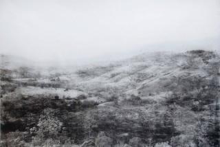 Tomás Ochoa: Paraíso línea negra