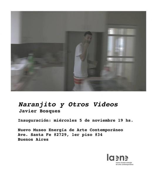 Javier Bosques, Naranjito y Otros Videos
