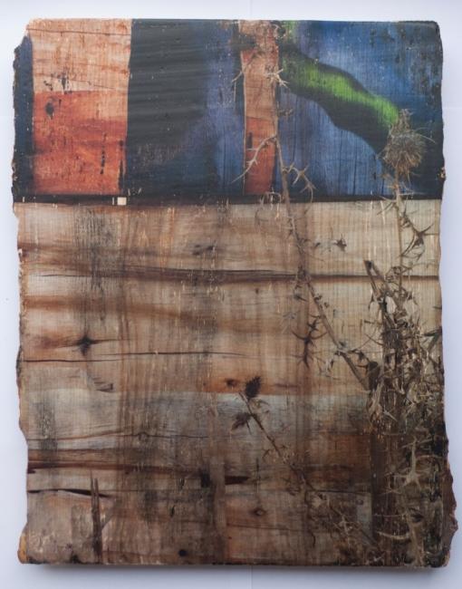 Karlos Kaplan, Sin título, Serie Ruptura, 2016-2017. Fotografía, transferencia y acrílico, sobre madera, 30,7 x 24. Pieza única, edición sobre diversas maderas 5 ejemplares – Cortesía de la Galería Acanto