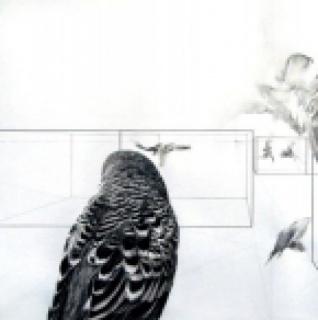 Angelica Monge, El mundo como un holograma V