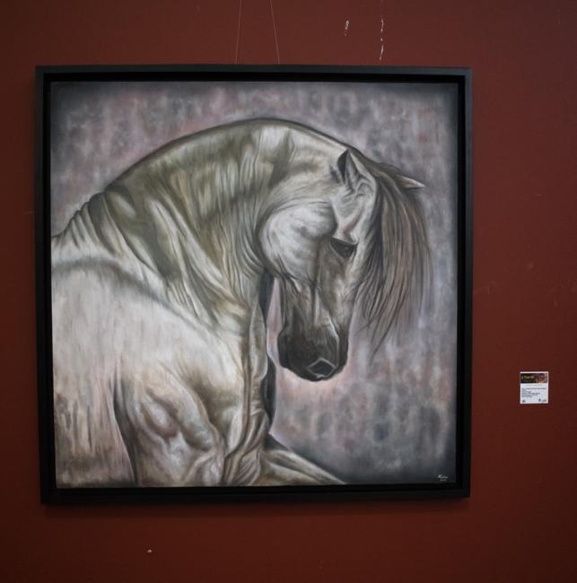 Salón de arte Joven 2017, Haidar Ali Tipu Zinan
