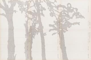 Johanna Calle, Cercas, 2016, 83 x 124,5 cm, texto mecanografiado sobre papel notarial antiguo
