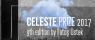 CelestePrize 2017