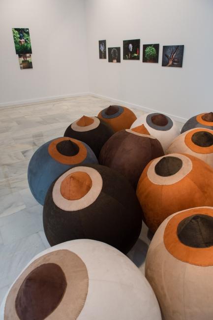 Cortesía del CAAM   Ir al evento: 'Raquel Paiewonsky. Soy mi propio paisaje'. Exposición en Centro Atlántico de Arte Moderno (CAAM) - Sala San Antonio Abad / Las Palmas de Gran Canaria, Las Palmas, España