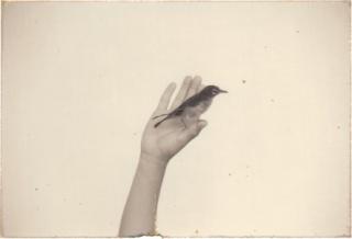 Nakazora #954, 2002 fotografia (gelatina e prata) + técnica mista - 7,5 x 11,5 cm Edição: 10/40