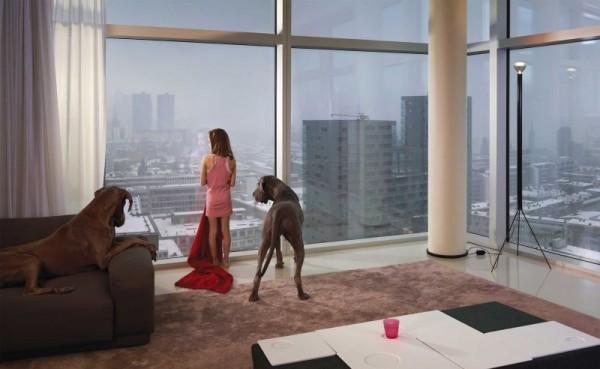 Rotterdam - towerdogs. Ellen Kooi