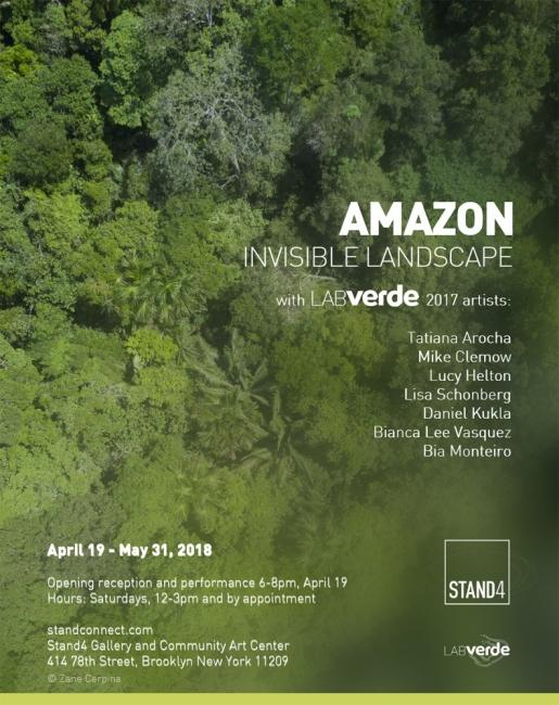 Amazon. Invisible Landscape