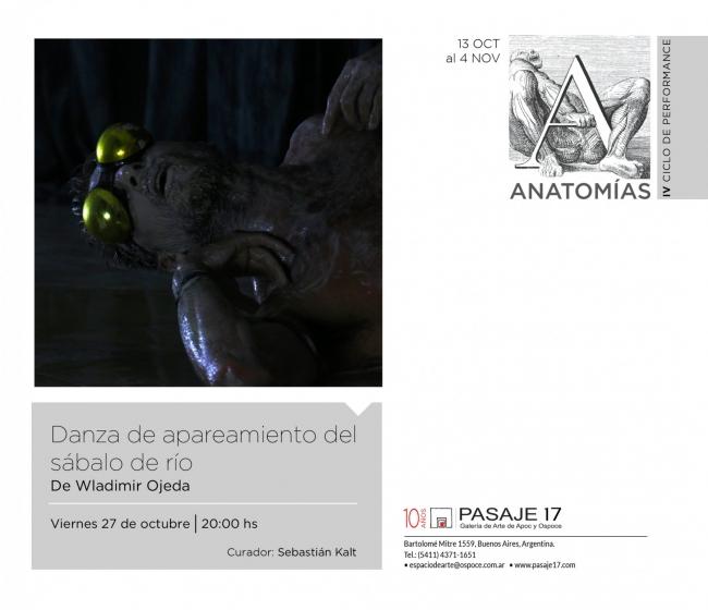 Danza de apareamiento del sábalo de río | Ir al evento: 'Ciclo de Performance: Anatomías'. Performance de Arte en vivo, Arte sonoro, Videoperformance en Pasaje 17 Arte Contemporáneo / Buenos Aires, Argentina