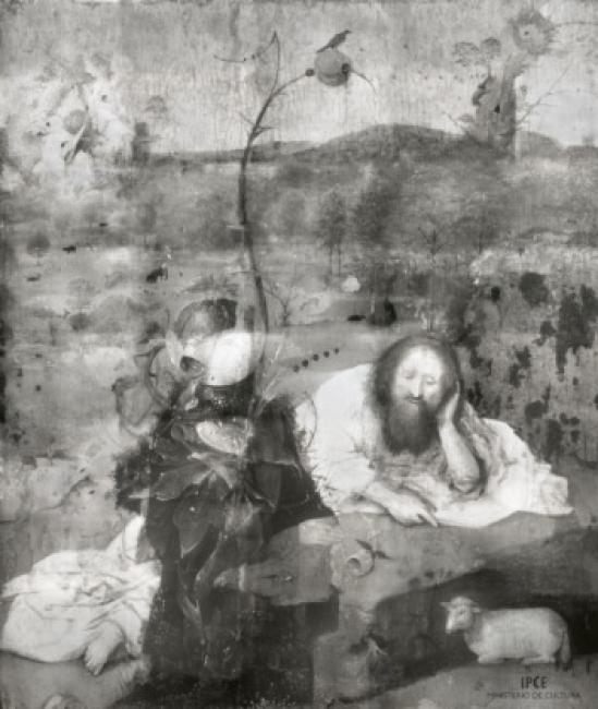 Fotografía infrarroja realizada por Rik Klein Gotink (la visualización interactiva http://boscointeractivo.es/, arreglos y registro fueron realizados por Robert G. Erdmann para el Proyecto de investigación y conservación del Bosco) | Ir al evento: 'Una colección redescubierta. Tablas flamencas del Museo Lázaro Galdiano'. Exposición de Pintura en Museo Lázaro Galdiano / Madrid, España