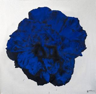 Fernando Álamo: La rosa de los vientos