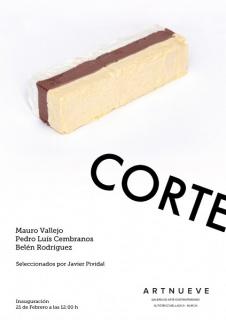 CORTE: Mauro Vallejo, Pedro Luis Cembranos y Belén Rodríguez