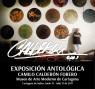 Exposición Antológica de Camilo Calderón Forero