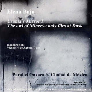 URANIA´S MIRROR I. THE OWL OF MINERVA ONLY FLIES AT DUSK