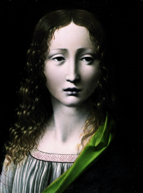 Atribuido a Giovani Antonio Boltraffio, El Salvador adolescente, óleo sobre tabla 1490[ca]-1495[ca]. Inventario 2680 © Museo Lázaro Galdiano