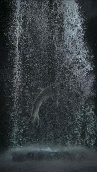 Bill Viola, La ascensión de Tristán (El sonido de una montaña bajo una cascada), 2005. Proyección de video de alta definición en color; 580 x 326 cm, 10min, 16 s Intérprete: John Hay, Studio Bill Viola © Bill Viola Foto: Kira Perov