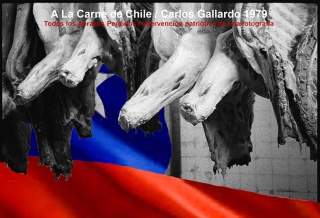 A LA CARNE DE CHILE. Imagen cortesía D21 Proyectos de Arte