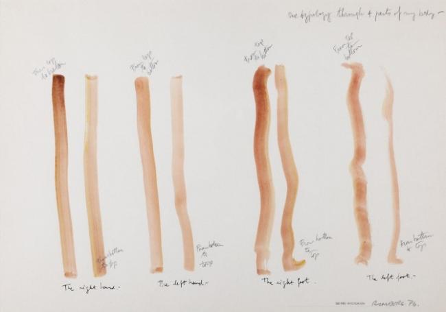 1 Typology through four parts of my body 1976  Acuarela sobre papel  50 x 70 cm