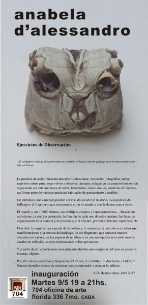 Anabela d'Alessandro. Ejercicios de observación | Ir al evento: 'Ejercicios de observación'. Exposición en 704 oficina de arte / Buenos Aires, Argentina
