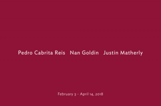 Pedro Cabrita Reis Nan Goldin Justin Matherly