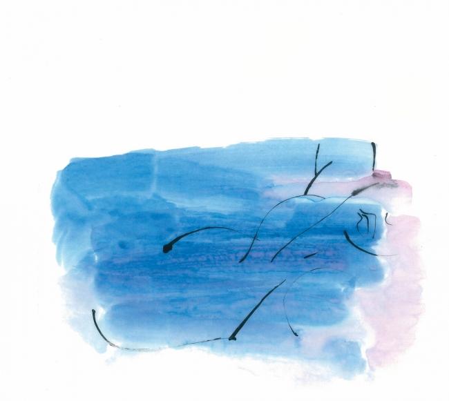 Rosavictòria, Bleixar cadenciós. Aquarel·la i tinta. 25x31